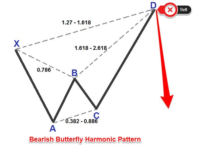 Butterfly harmonic pattern