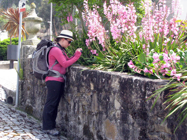 peregrina de Santiago fotografando flores