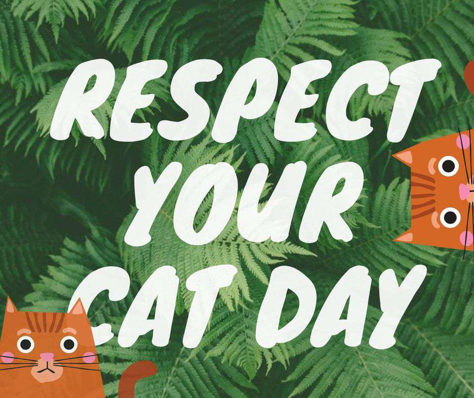 Respect Your Cat Day Wishes