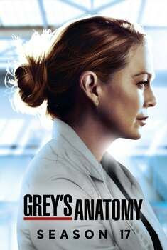 Grey's Anatomy 17ª Temporada Torrent – WEB-DL 720p/1080p Dual Áudio