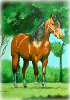 arte de cavalo em acrílico