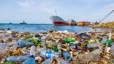 Sampah Laut Bisa Picu Perubahan Perilaku dan Penyakit