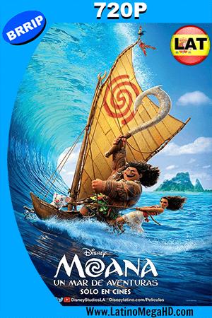 Moana: Un Mar de Aventuras (2016) Latino HD 720p ()