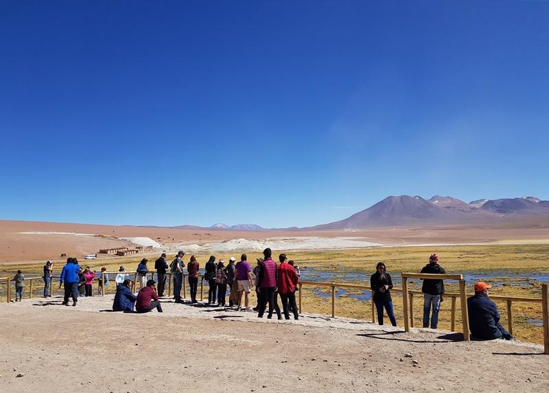 Bofedal de Putana: Deserto do Atacama, como chegar