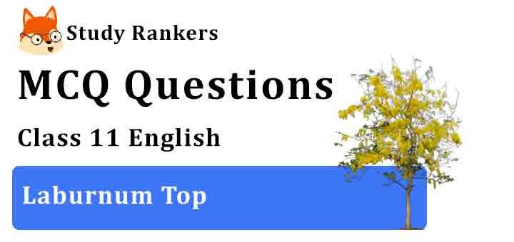 MCQ Questions for Class 11 English Laburnum Top Hornbill