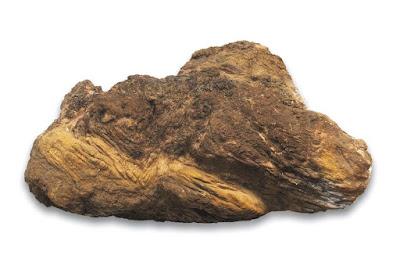 Canaã 2 (40,5kg)