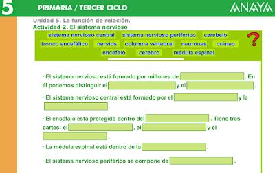 http://www.joaquincarrion.com/Recursosdidacticos/QUINTO/datos/02_Cmedio/datos/05rdi/ud05/02.htm