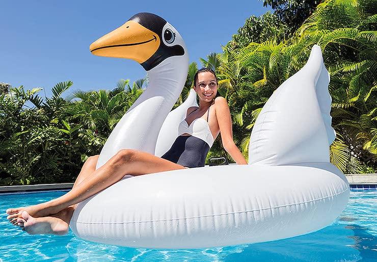 Flotador cisne gigante