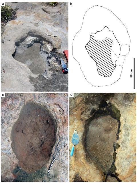 Pesquisadores identificam pela primeira vez pegadas de dinossauros no RN; veja imagens