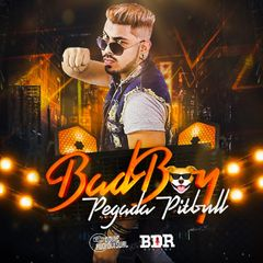 BADBOY PEGADA PITBULL CD 2021