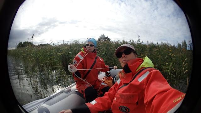 Kaksi pelastautumispukuista henkilöä kumiveneessä ruovikon reunassa