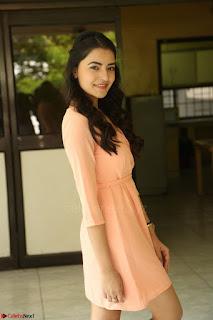 Rukshar Mir in a Peachy Deep Neck Short Dress 121.JPG