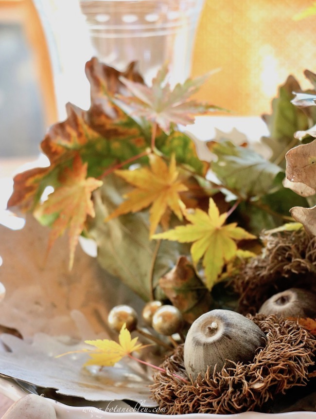 Thanksgiving Natural Centerpiece tips for using twigs, leaves, and acorns from more than one tree or shrub to add variety to your arrangment