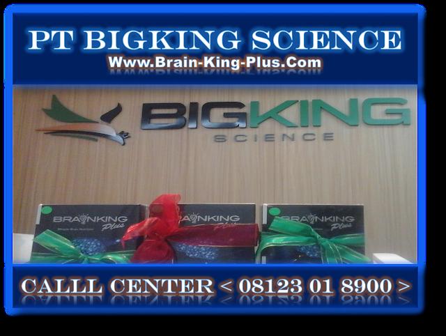 Brainking Plus 08123 01 8900