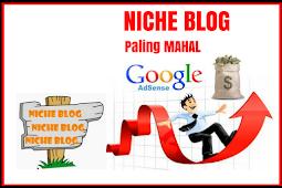 Ini Dia 4 Niche Blog yang Dibayar Mahal Oleh Google Adsense