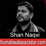 https://www.humaliwalyazadar.com/2018/10/shan-naqvi-nohay-2019.html