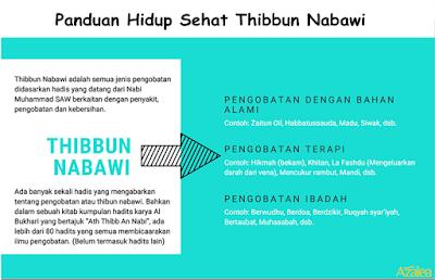 thibbun nabawi