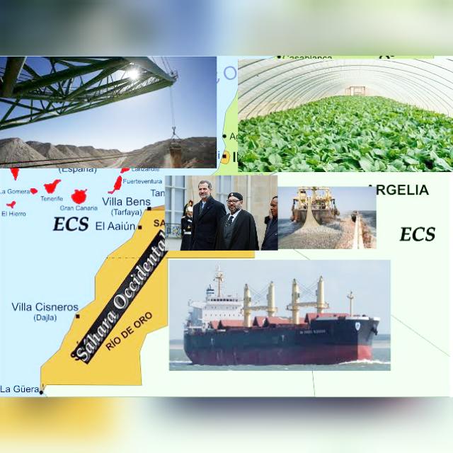 Lista de empresas que expolian el Sáhara Occidental; España es el país que más saquea el territorio..