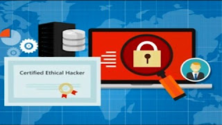 The Complete Ethical Hacking Course 2020 : CEH V10