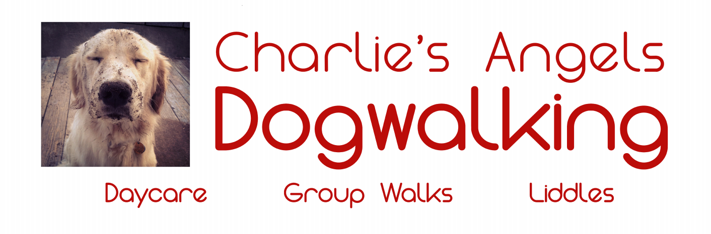 Charlie's Angels Dogwalking Banner | Banners.com