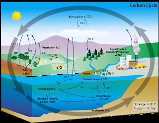 water as temperature regulator