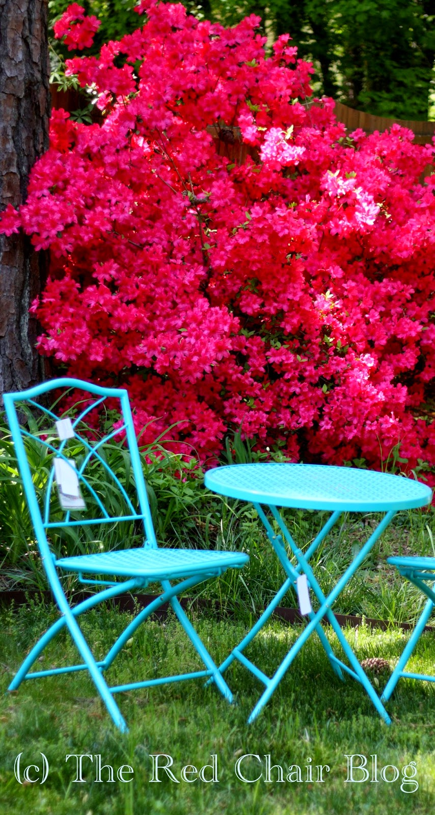 HD Designs aqua turquoise blue folding bistro set with azaleas at The Red Chair Blog