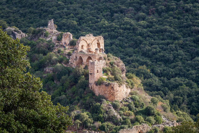 Gothic hall found in Crusader knight's hilltop castle in Israel
