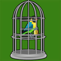Play BigEscapeGames - BEG Mountain Valley Parrot Escape
