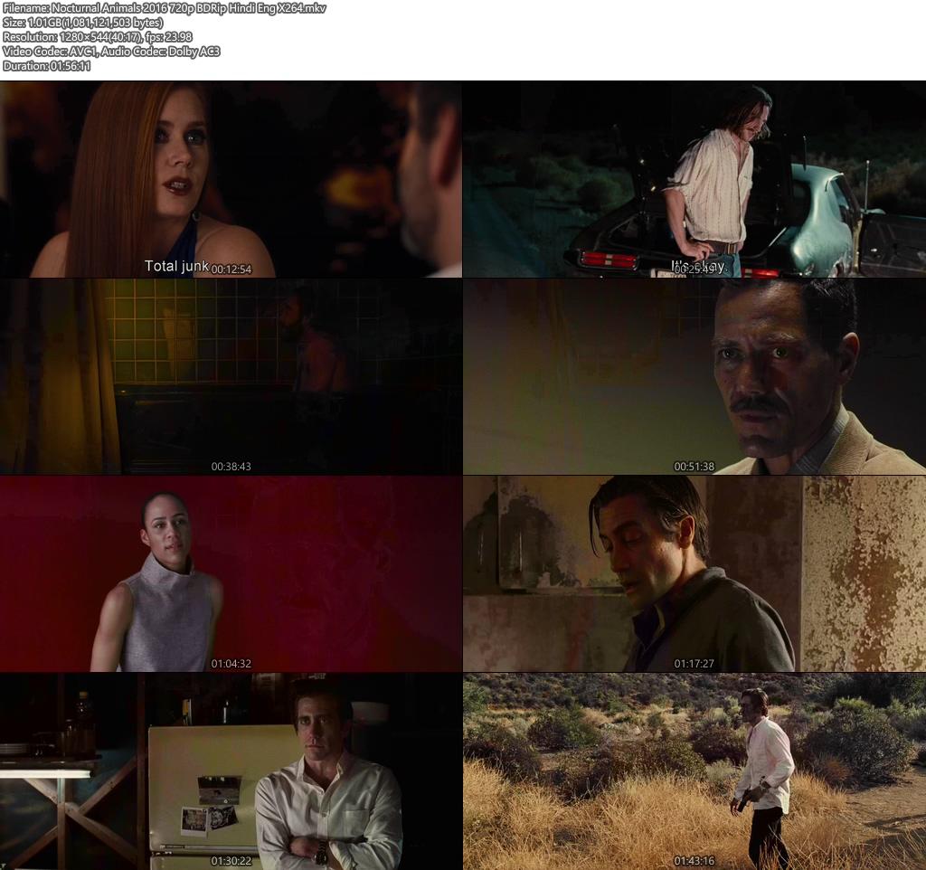 Nocturnal Animals 2016 720p BDRip Hindi Eng X264 | 480p 300MB | 100MB HEVC Screenshot