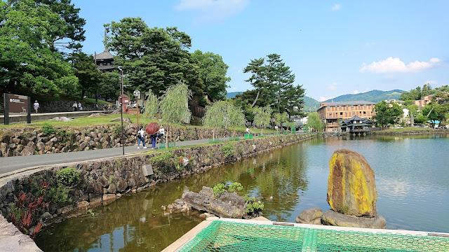 奈良公園 猿沢池
