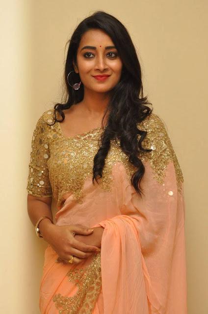 Actress Bhanu Sri Latest Cute Pics In Saree Navel Queens