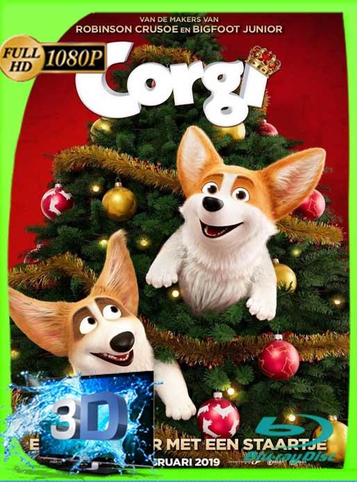 Corgi, un Perro Real (2019) 3D-SBS HD [1080p] Latino [GoogleDrive] SilvestreHD