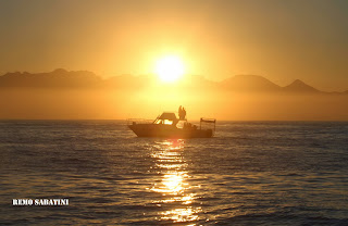 African Shark Eco Charters out shark spotting in False Bay at sunrise