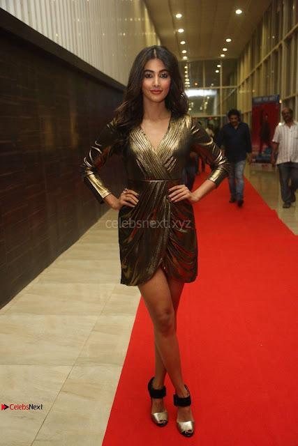 Pooja Hegde looks glamarous in deep neck sleevless short tight golden gown at Duvvada Jagannadham thank you meet function 005.JPG