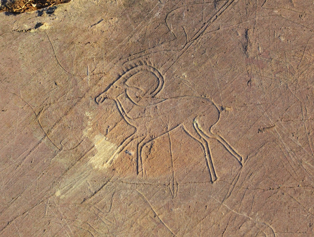 Rare petroglyphs dating from the Early Middle Ages discovered in Altai