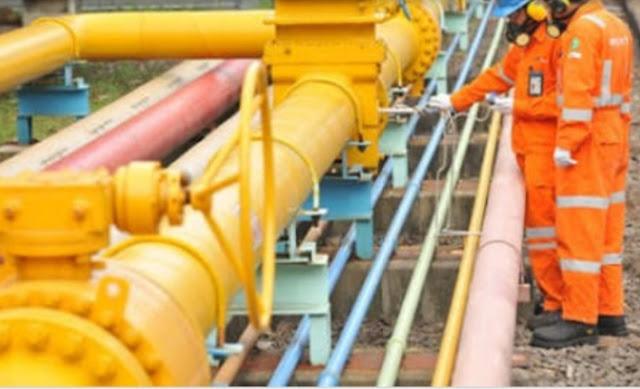 PGN Berkomitmen Tingkatkan Manfaat Gas Bumi Domestik Jangka Panjang