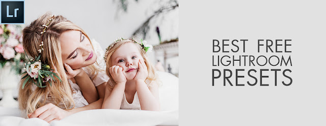 preset download dual pc lightroom tone