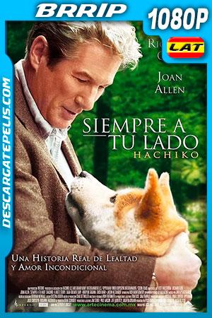 Hachiko: Siempre a tu lado (2009) HD 1080p BRRip Latino – Ingles