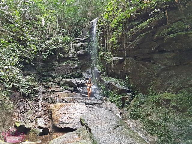 Cachoeiras da Floresta da Tijuca