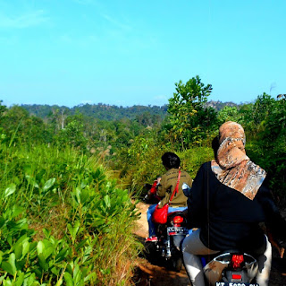 Roda 2 membelah rimba menuju batu dinding Borneo