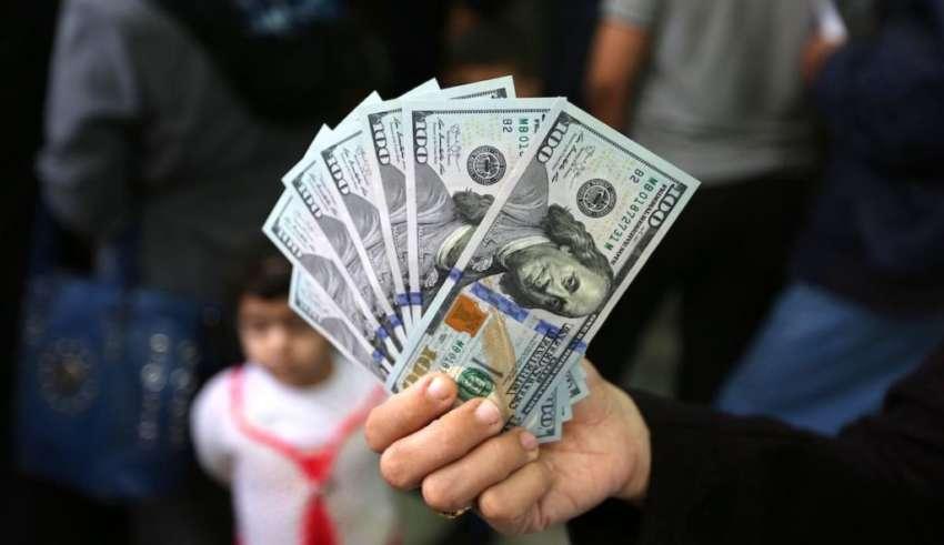 رابط فحص الـ 100 دولار في غزة دفعة شهر 6
