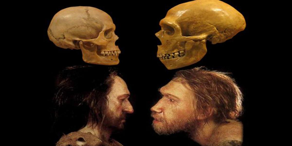 hallazgos,Evolución humana,Homo sapiens,desierto