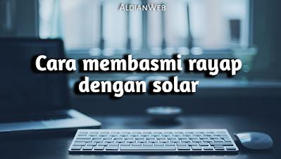 Cara membasmi rayap dengan solar