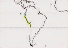 peruvian tern Sternula lorata
