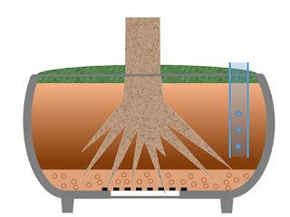鉢の中に有機液体肥料を入れ終わる。