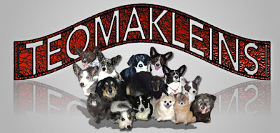 http://teomakleins.blogspot.com