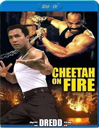 Cheetah On Fire (1992) Dual Audio Hindi 480p WEB-DL 300MB