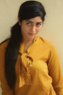Actress Kalyani  Pictures at Thu Hi Re Meri Jaan Movie Press Meet  0036.jpg