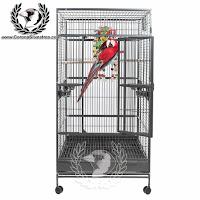 http://www.coronasilvestres.com/jaulas-para-loros/651-jaula-mod-single-large-parrot.html