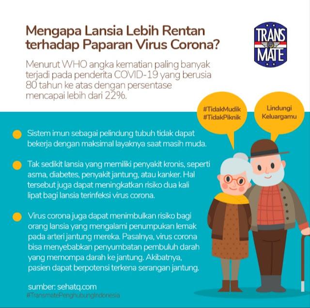 tidak mudik, tidak piknik, transmate penghubung indonesia, corona virus, covid-19, virus corona